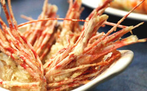 rawshrimphead